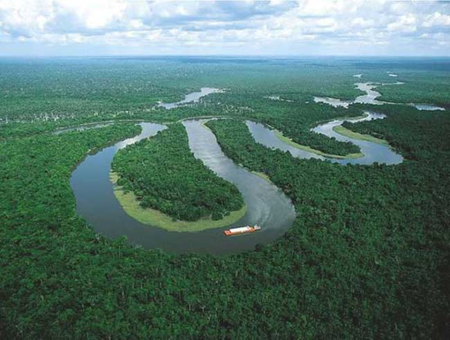 breathtaking shots of the amazon forest 640 03