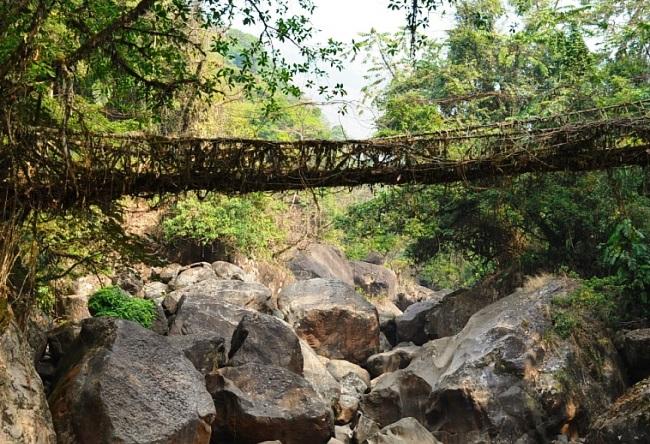 Мосты которые сооружает сама природа 2