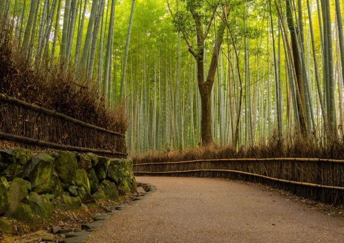 Путешествие в Японию храмы Киото 2