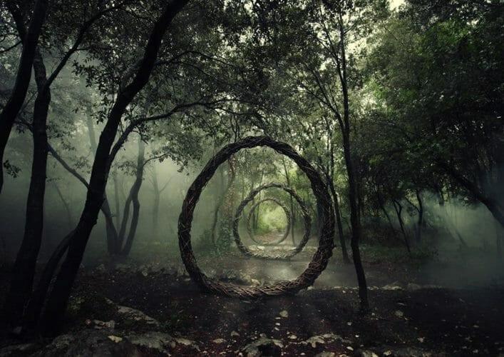 Лес Хоя Бачу 5