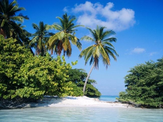 Maldivi-15-leto