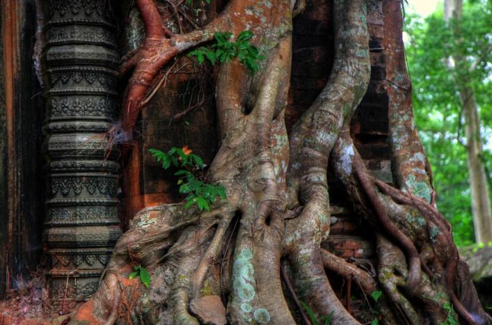 Интересные места Азии или столица Кхмерской империи 4