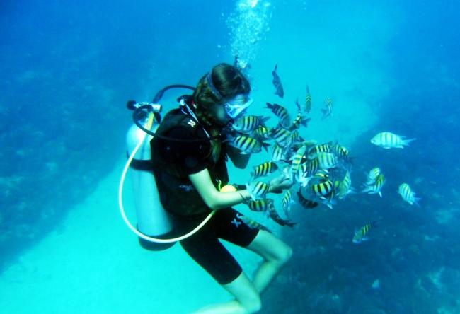 Рай для дайвинга и серфинга  Доминикана 3