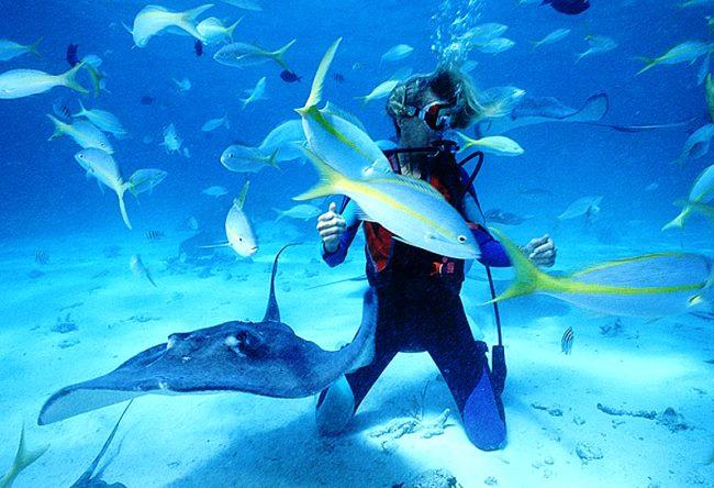 Рай для дайвинга и серфинга  Доминикана 4