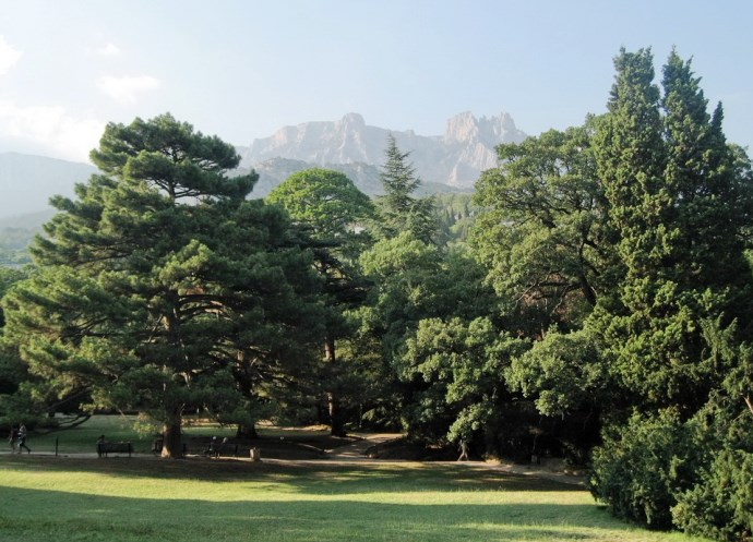 Алупкинский парк интересные факты 2