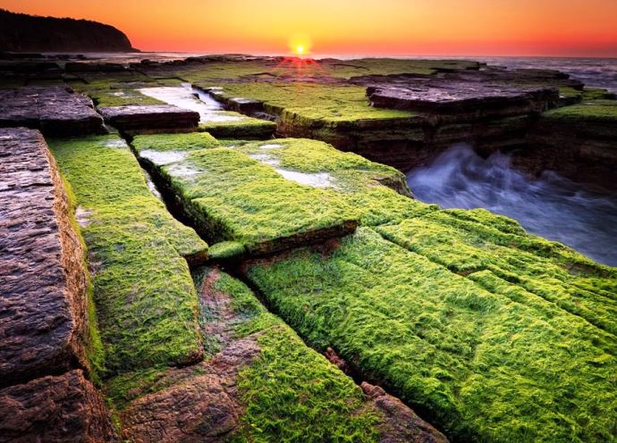 Пляж в Австралии 5