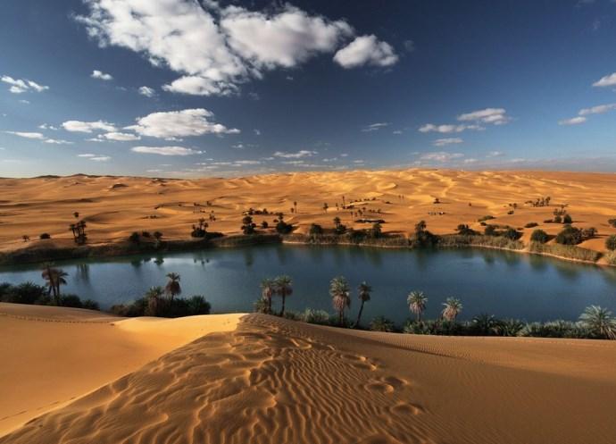 Оазис в пустыне 2