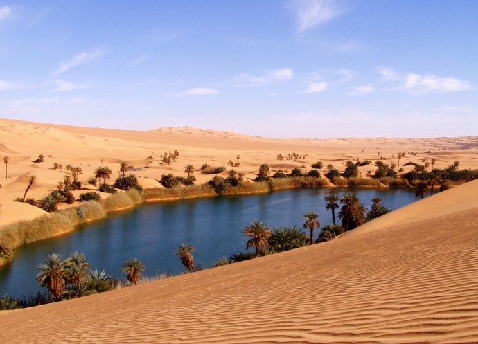 Оазис в пустыне 3