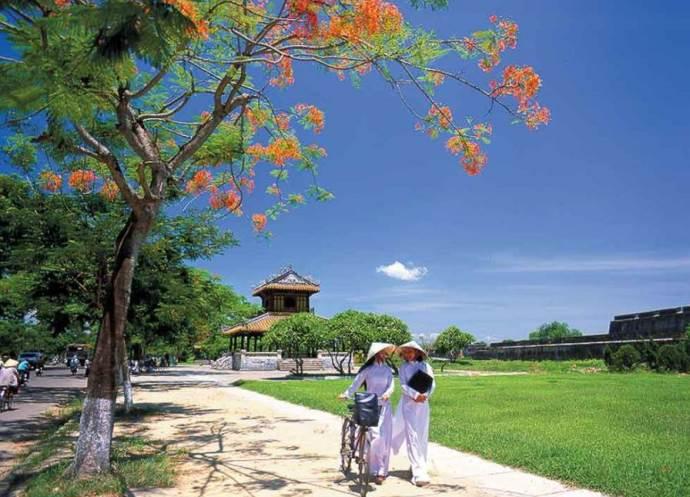 Приглашение во Вьетнам для визы 5