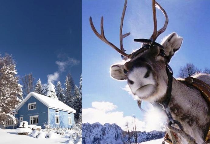 Интересные факты из зимнего путешествия по Финляндии 2