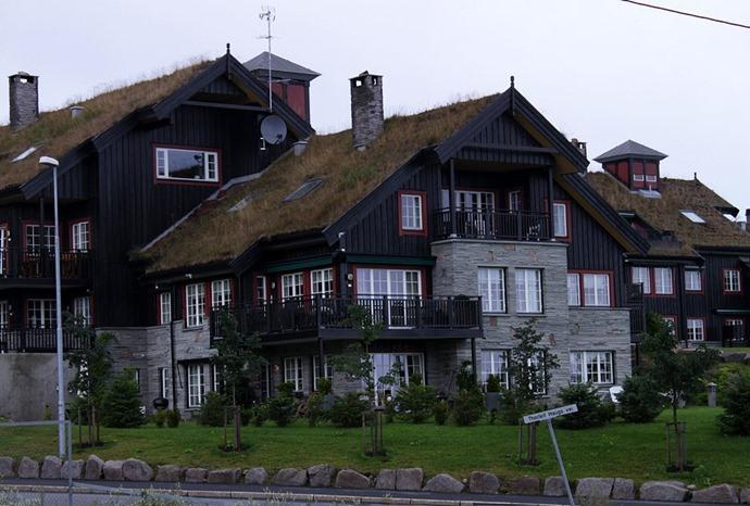 Достопримечательности Европы зеленые крыши Финляндии 2
