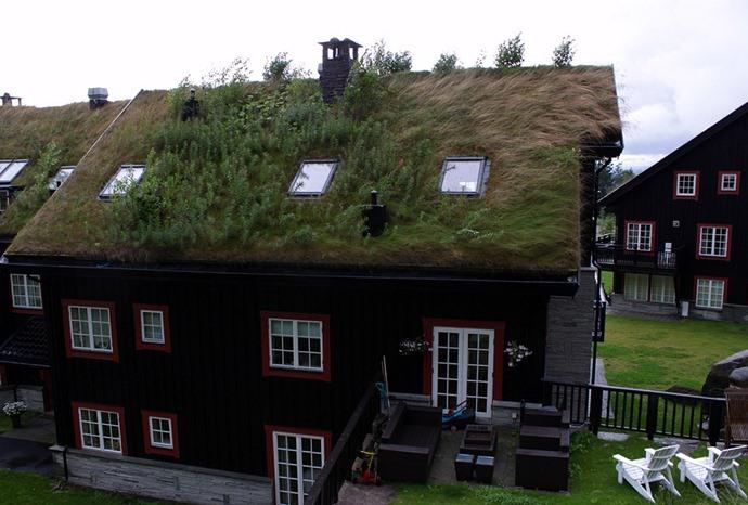 Достопримечательности Европы зеленые крыши Финляндии 5