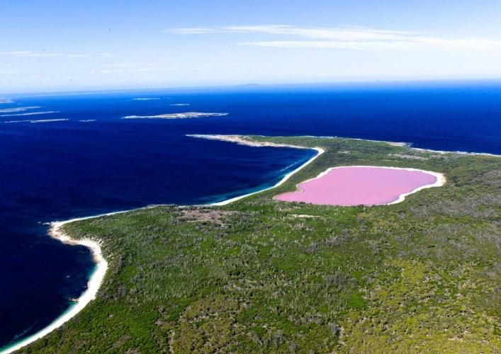 Розовый бриллиант 2