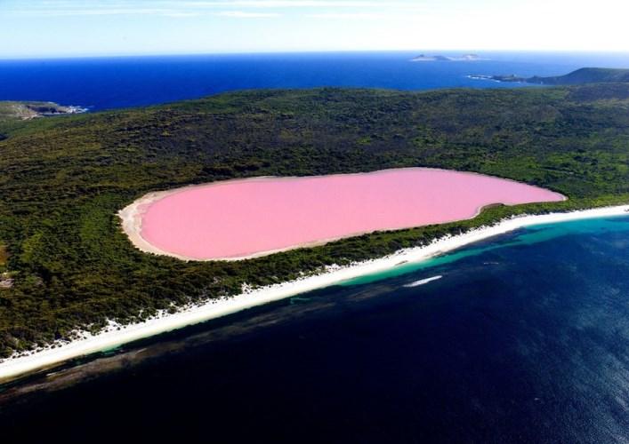 Розовый бриллиант 4
