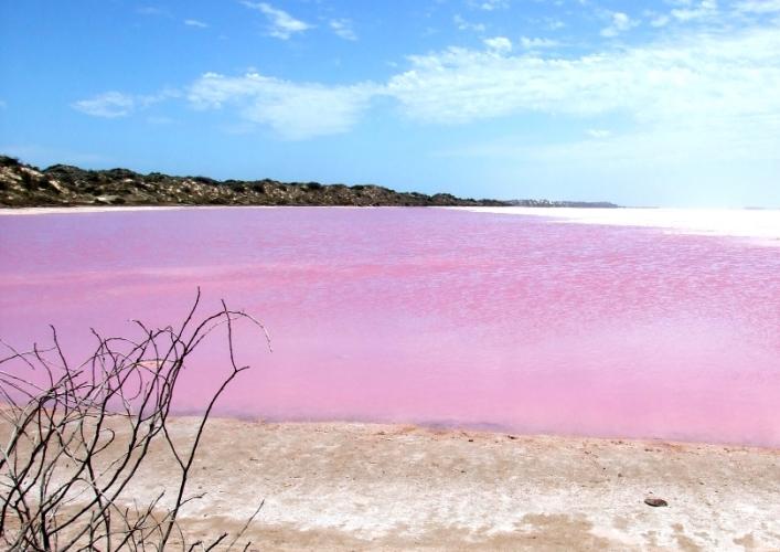 Розовый бриллиант 5