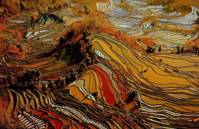 Путешествие к хранителю рисовых палей в Юньнань  5