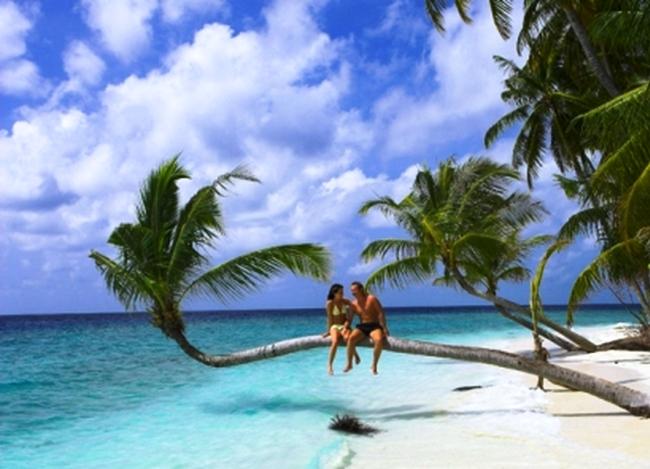 Где можно хорошо и весело отдохнуть в Доминикане 5