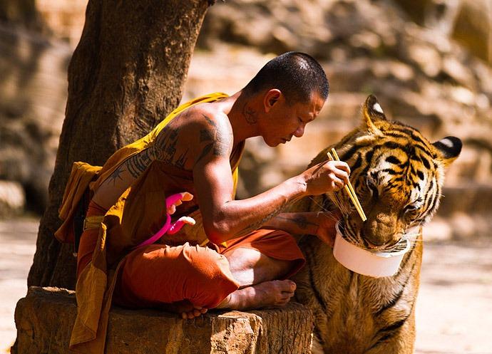 Куда поехать отдыхать Тигриный монастырь в Таиланде 5