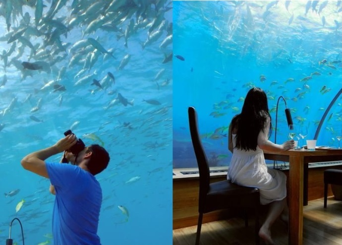Путешествие на Мальдивы Ithaa Undersea Restaurant 2