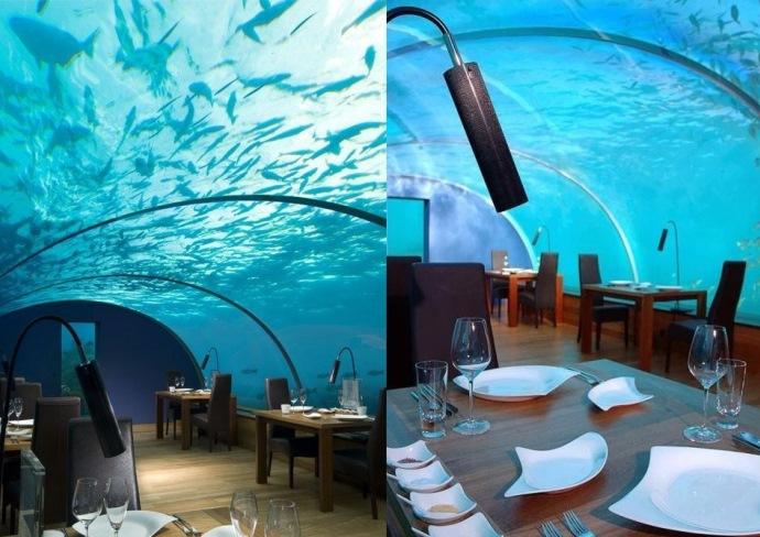 Путешествие на Мальдивы Ithaa Undersea Restaurant 3