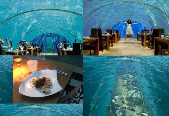 Путешествие на Мальдивы Ithaa Undersea Restaurant 5