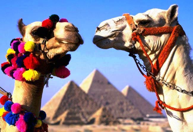 Какие достопримечательности можно увидеть в Египте 5