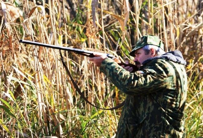Охота на косулю в Белоруссии 4