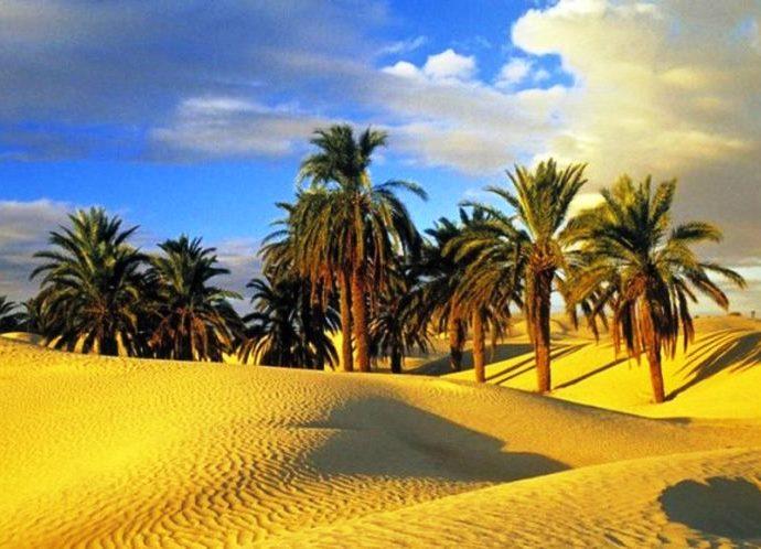 Фото Туниса 6