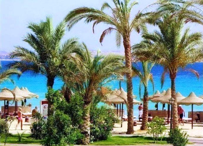 Фото Египта 2