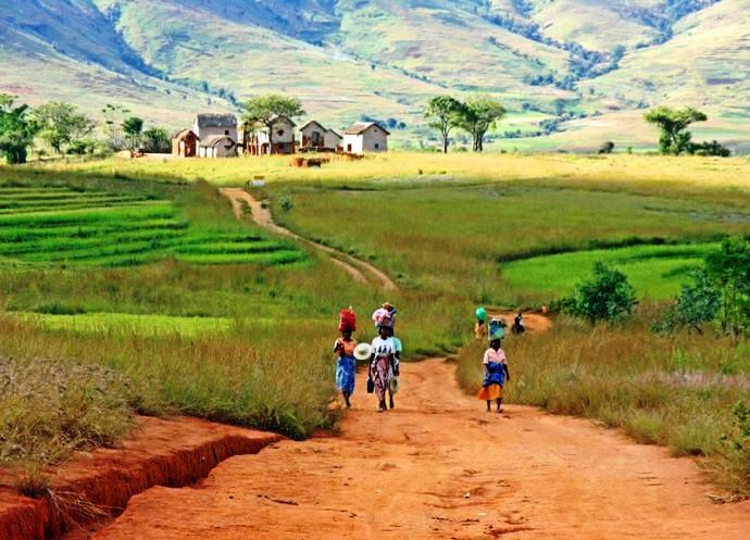 Фото Мадагаскара 3