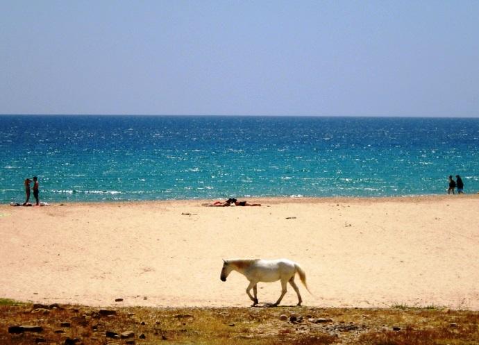 Фото Португалии 2