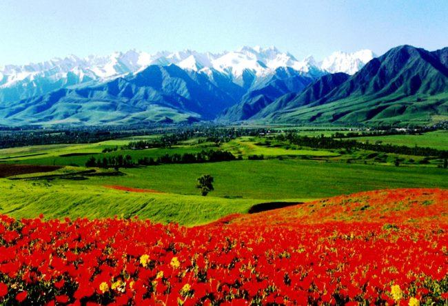 Бишкек в центре Чуйской долины 3