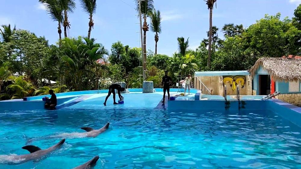 Манати – тропический парк