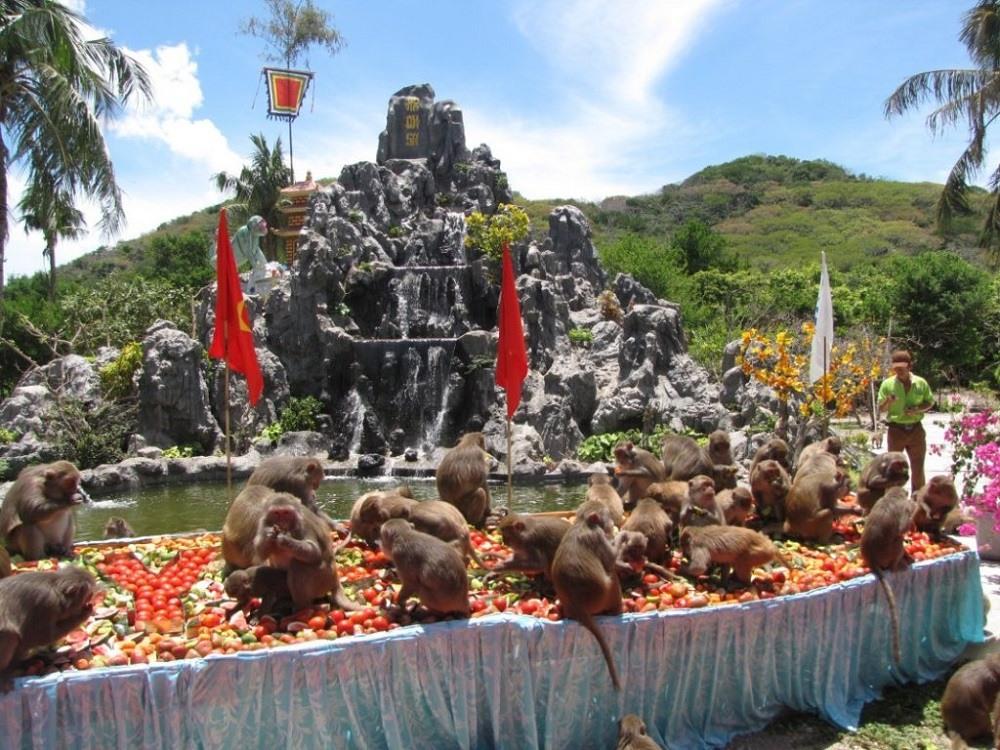 остров обезьян – питомник
