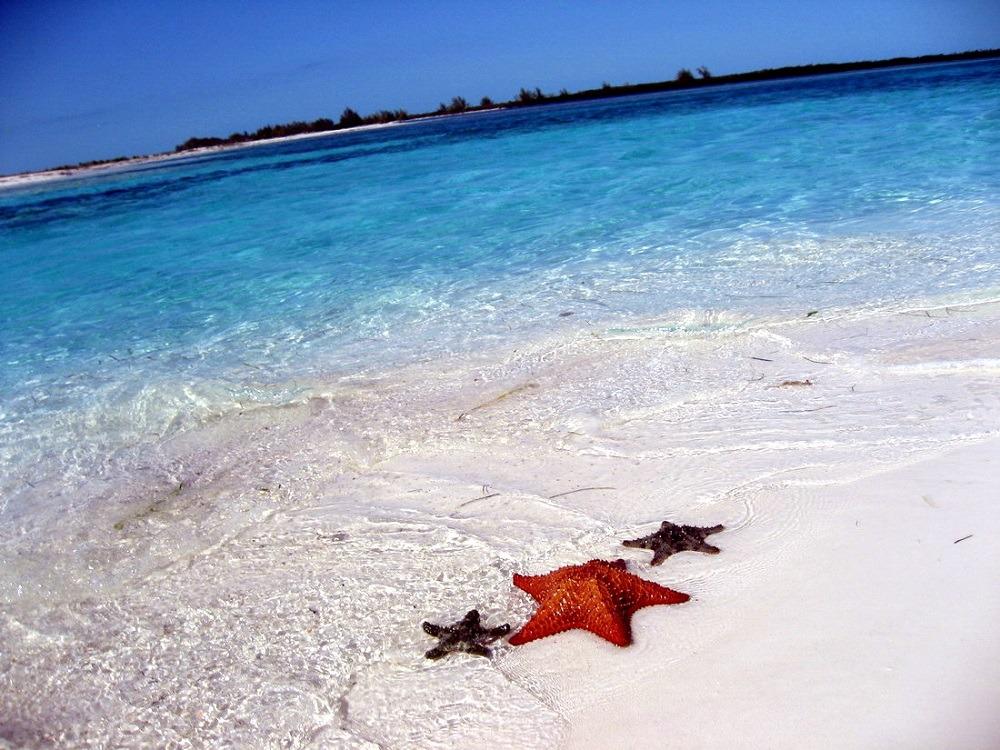Когда открывается курортный сезон на Кубе