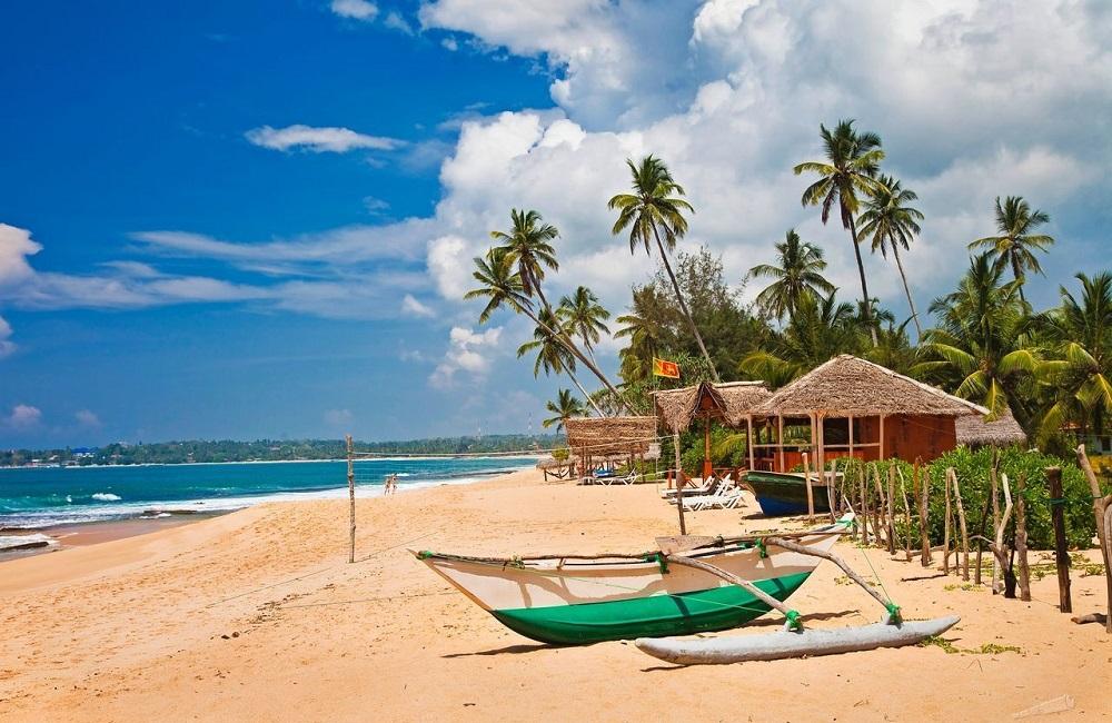 где выгодно купить туры на Шри-Ланку
