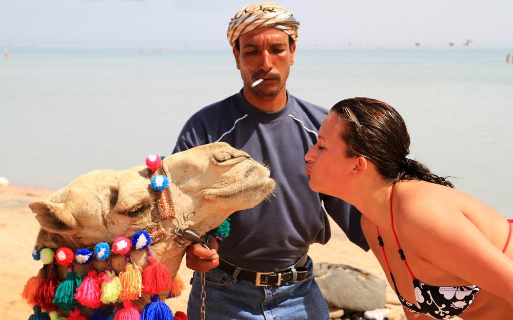 Что делают туристы в Египте