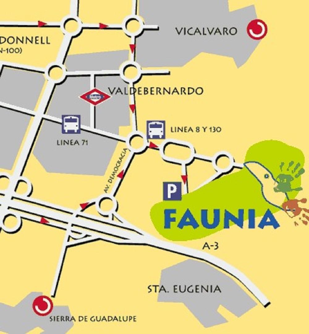 Как добраться в Мадриде до парка Faunia