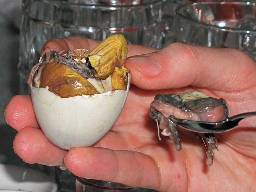Зародыш утки Вьетнам