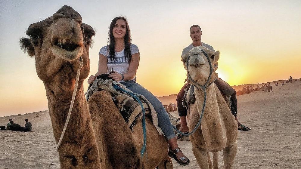 Тунис верблюды