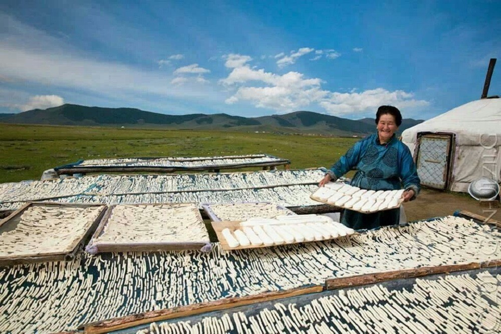 традиционный монгольский сыр
