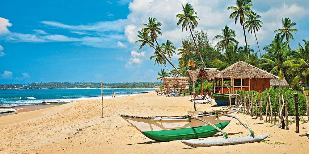 Шри-Ланка недорого