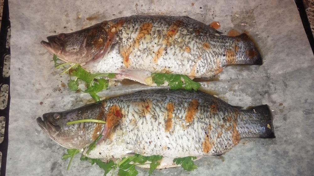 Барамунди