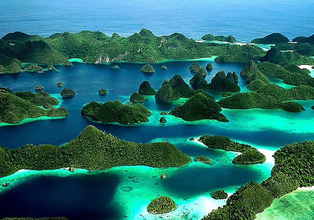 Природа Папуа-Новой гвинеи