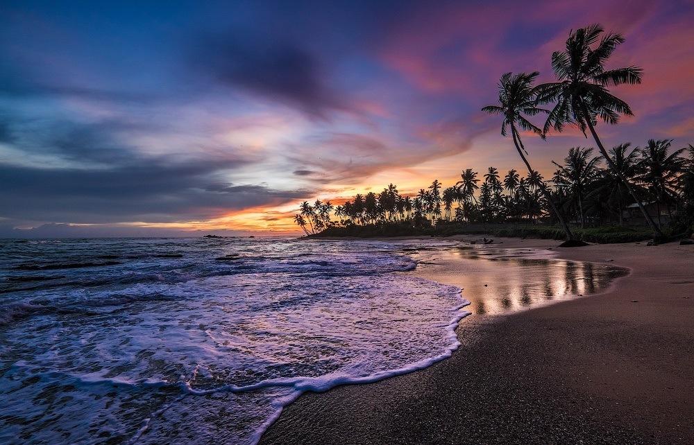 Вечер Шри-Ланка