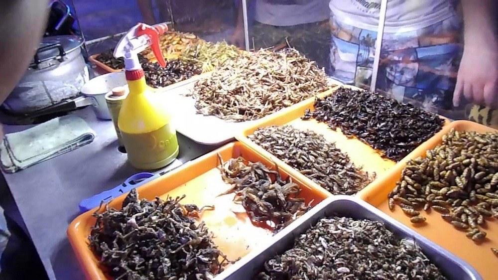Рынок насекомых