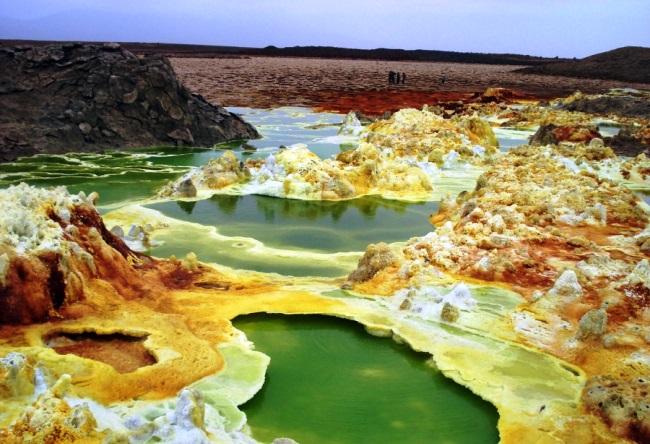1470.аф. Ядовитая красота пустыни Данакиль 3