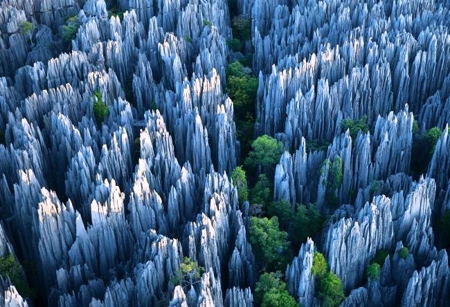 Каменный лес. Увидеть своими глазами 3