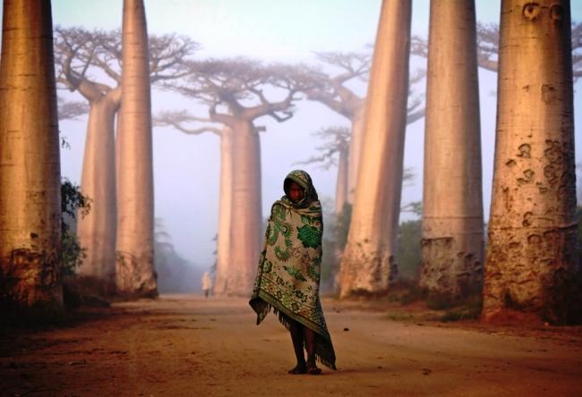 Сказочный остров Мадагаскар 4