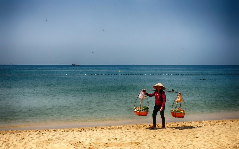 Вьетнамские законы